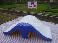 Commercial Grade PVC Tarpaulin Backyard Inflatable Water Totter Slide